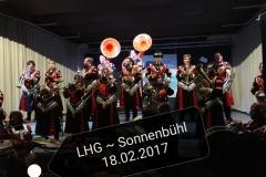 2017_02_18_Sonnenbühl_26